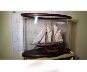 Ready-made oval display case with model no. 4